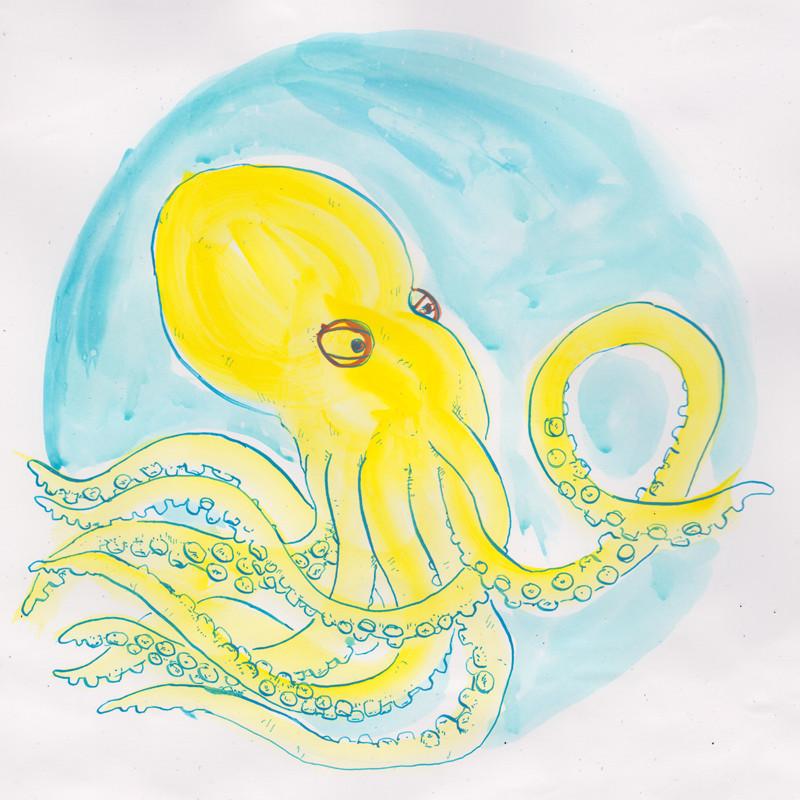octopus_v002